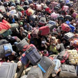 Беженцы — очередной этап уничтожения белой расы